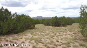 777 Sierra Verde Ranch Lot 777, Seligman, AZ 86337