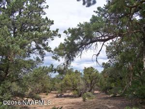 8553 S Rim Ranch Road, Valle, AZ 86046