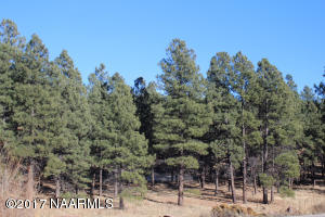 500 N Circle View Drive, Flagstaff, AZ 86001