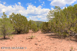 7742 N Buck Ridge Road, Williams, AZ 86046