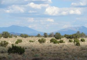 1263 South Rim Ranch Road, Valle, AZ 86046