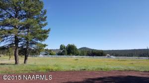948 Crestview Drive, Mormon Lake, AZ 86038