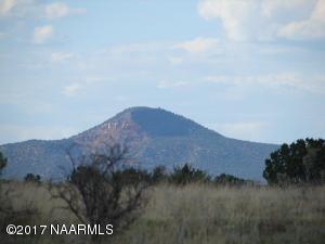 3290 N Peregrine Trail, Valle, AZ 86046