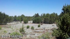 2185 E Clear Point Way, Williams, AZ 86046