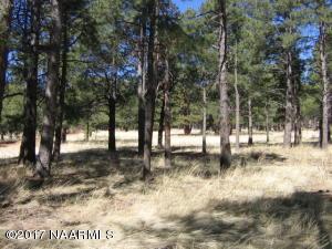 12907 E King John, Parks, AZ 86018
