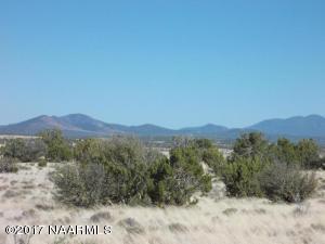 4379 S Starlit Trail, Williams, AZ 86046