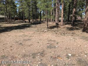 2858 W Castle Pine Drive, Williams, AZ 86046