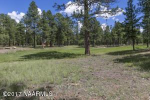 Xxx S Torrey Pines Road, Williams, AZ 86046