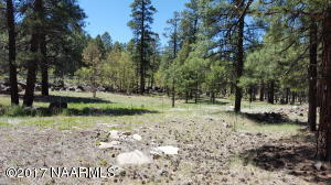 780 N Switzer Canyon Drive, Flagstaff, AZ 86001