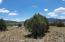 Iiii N Grand Canyon Boulevard, Williams, AZ 86046