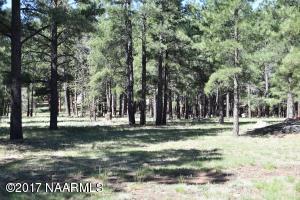 198 Sandige Lane, Mormon Lake, AZ 86038