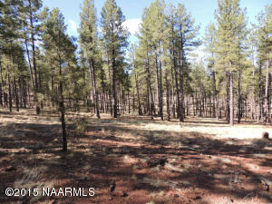 7454 E Long Bow Drive, Williams, AZ 86046