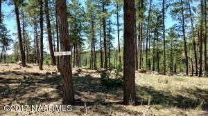 395 W Lazy Pines Lane, Munds Park, AZ 86017