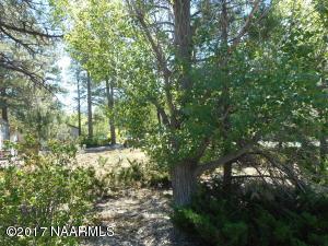 420 E Cedar Wood Drive, Munds Park, AZ 86017
