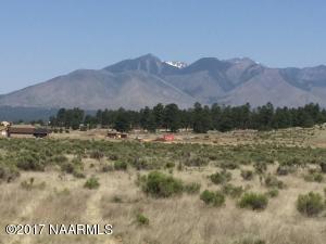 8805 Richfield Drive, Flagstaff, AZ 86004