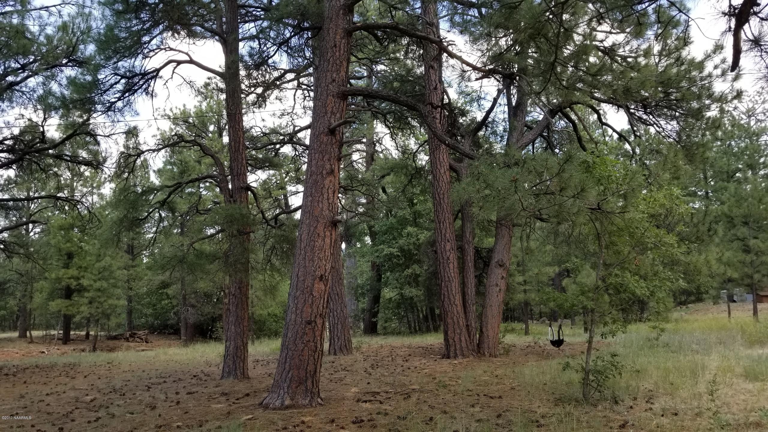 Mormon Lake Az >> 559 Mossy Trail Mormon Lake Az 86038 Us Flagstaff Land For
