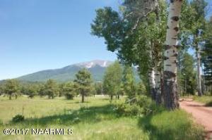 000 Hochderffer Hills, Flagstaff, AZ 86001