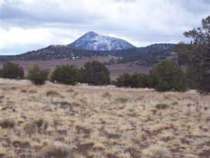 0 Az-66 Scenic, Seligman, AZ 86337
