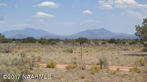 South View to San Francisco Peaks
