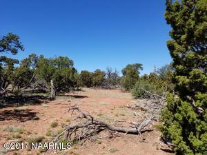 7799 Water Tank Circle, Williams, AZ 86046
