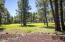 2252 Platt Cline, Flagstaff, AZ 86005