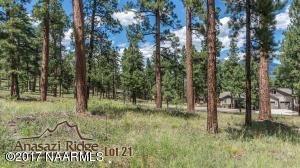 2088 N Cobblestone Circle, Flagstaff, AZ 86001
