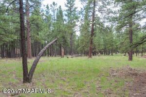 929 E Hattie Greene, Flagstaff, AZ 86001