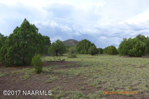 7613 Lightning Tree Lane, Flagstaff, AZ 86004