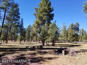 5 Fox Wood Springs Road, Munds Park, AZ 86017