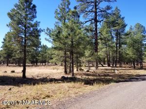 3 Fox Wood Springs Rd, Munds Park, AZ 86017