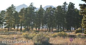 8787 Richfield Drive, Flagstaff, AZ 86004