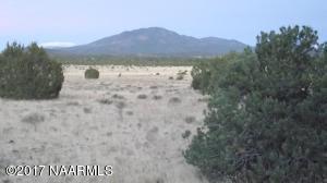 4836 N Red Mountain Road, Williams, AZ 86046