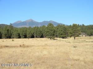 4461 N Brackin Ranch Road, Flagstaff, AZ 86001