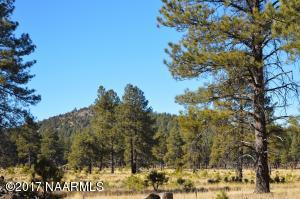 4 N Good Lane, Williams, AZ 86046