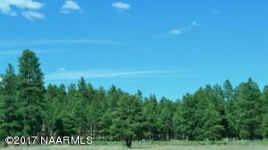 4607 N Brackin Ranch Road E, Flagstaff, AZ 86001