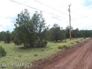234 E Ironwood Drive, Williams, AZ 86046