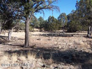 6846 N Santa Fe Road, Williams, AZ 86046