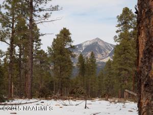 0 Hidden Hollow, Flagstaff, AZ 86001