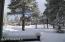 Winter Wonderland Back Patio