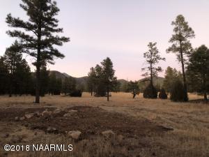 1399 Piedra Lane, Parcel 4, Flagstaff, AZ 86001