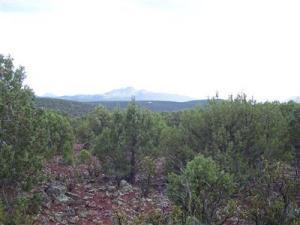 491 Westwood Ranch Lot 491, Seligman, AZ 86337