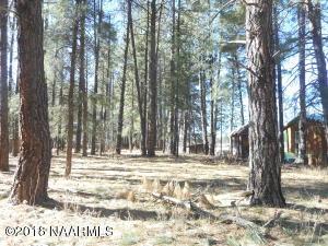 529 Barnwood Trail, Munds Park, AZ 86017