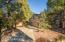 1920 N Rain Tree Road, Flagstaff, AZ 86004