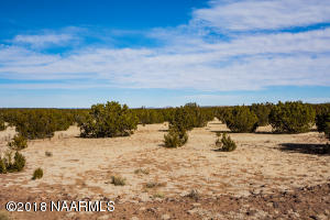 13396 Howard Mesa Loop, Williams, AZ 86046
