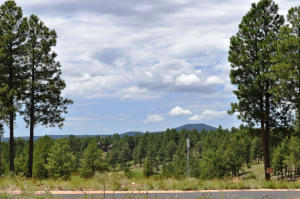 3410 S Brown Sage Court, Flagstaff, AZ 86005