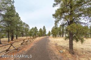 1101 N Pine Cliff Drive, Flagstaff, AZ 86001