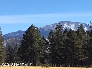 18110 Crowley Trail, Flagstaff, AZ 86001