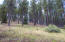 Lot 25 Foothills Way, Flagstaff, AZ 86001