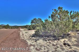 1550 W Antelope Lane, Williams, AZ 86046