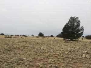 4472 S Long View Road, Williams, AZ 86046